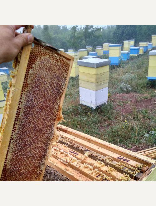 Биологичен пчелен мед Планински от Сакар
