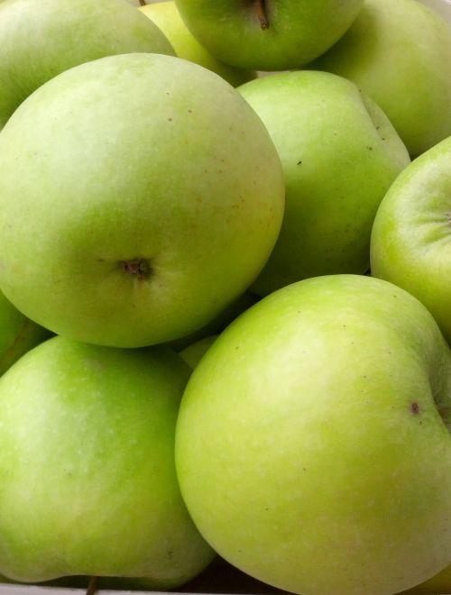 Ябълки, сорт Грени Смит