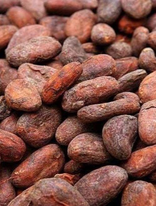 Сурови какаови зърна, произход Перу