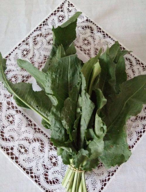 Зеленчукова кошница