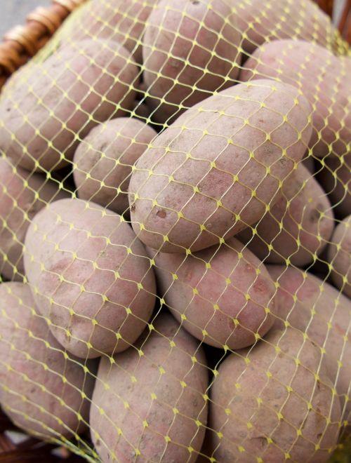 Червени родопски картофи, сорт Санте