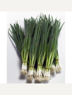 Зелен лук