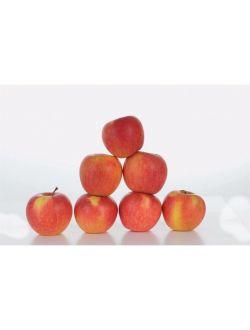 Био ябълки, сорт Пинова