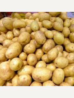 Жълти картофи, сорт Боровина