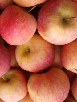 Ябълки, сорт Флорина