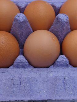 Яйца от пасищни кокошки, кутия 10 бр