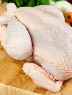 Пасищно пиле, половинка