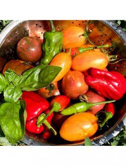 Томи Свежарката - 100% зеленчуков сок